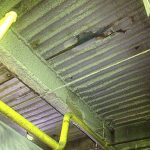 cellulose insulation plymouth